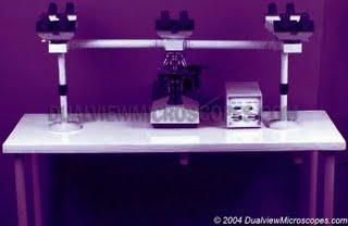 Equipo de microscopia para estudio en grupo, buena opcion para universidades y estudios de postgrado.