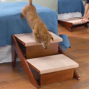Enfoque pr ctico para la fisioterapia de perros con - Escaleras para perros pequenos ...