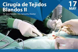 Cirugía de Tejidos blandos II - 2016