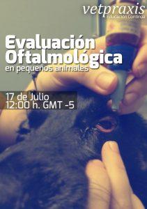 Evaluación Oftalmológica en pequeñas especies