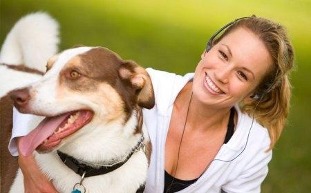 Pueden los perros sentir celos? – VetPraxis