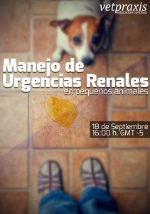 Manejo de Urgencias renales en pequeños animales
