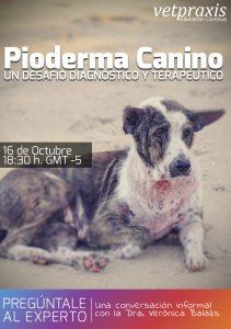 Pioderma Canino: Un desafío diagnóstico y terapéutico