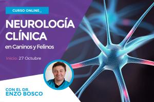 neurologia-clinica-2016