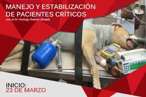 manejo pacientes criticos 2016