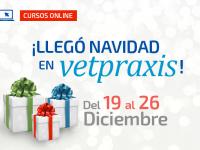 Promoción Navidad VetPraxis 2016