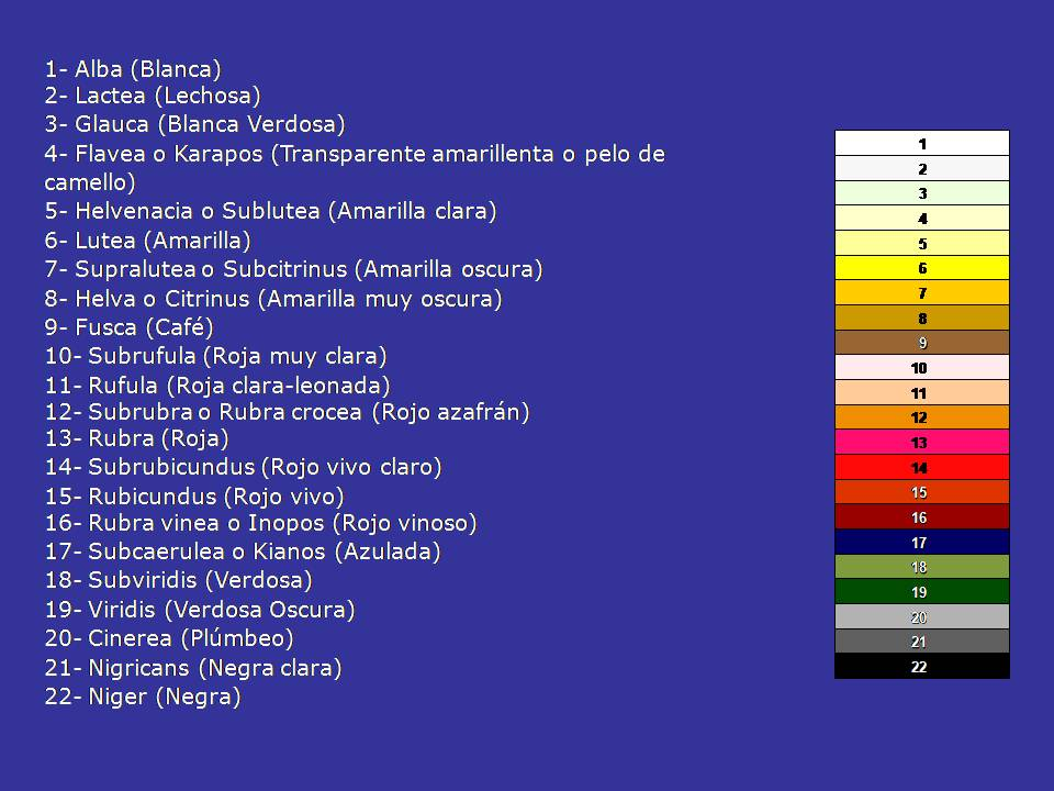 Tipos de orina pdf