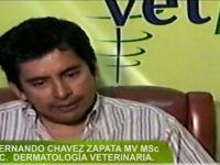 """Video: """"Aspectos Dermatológicos de las Enfermedades Endocrinas"""""""