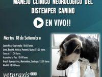 En Vivo: Manejo Clínico Neurológico del Distemper Canino