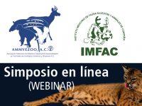 IMFAC Organiza primer Webinar desde el CVDL