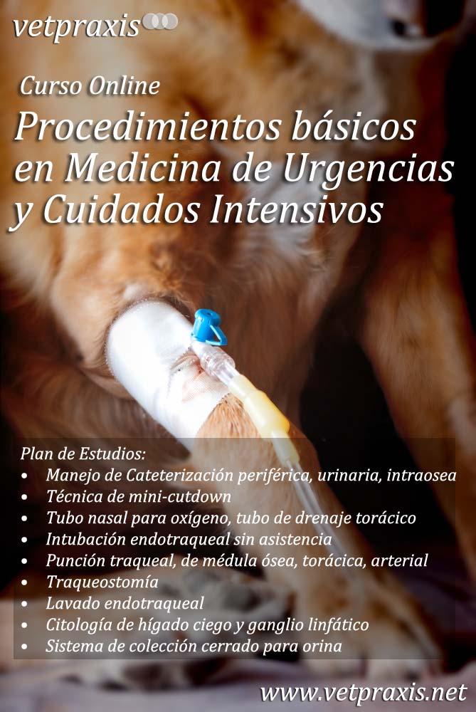 CursoUrgenciasGastrointestinales.1