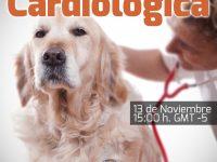 Pregúntale al Experto: Pruebas de exploración cardiológica