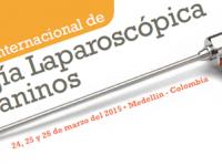 I Curso Internacional de Cirugía Laparoscópica en Caninos