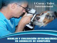 I Curso – Taller Internacional: Manejo y Evaluación Oftalmológica en Animales de Compañía