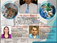 I Congreso Internacional Teórico Práctico de Neurología en Pequeños Animales