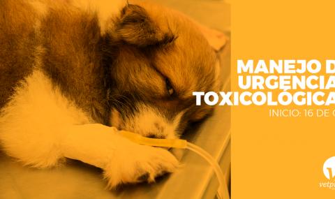 Manejo de Urgencias Toxicológicas