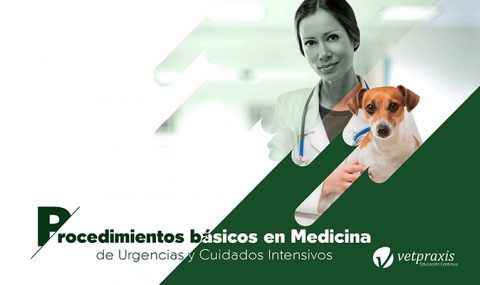 Procedimientos Básicos en Medicina de Urgencias y Cuidados Intensivos